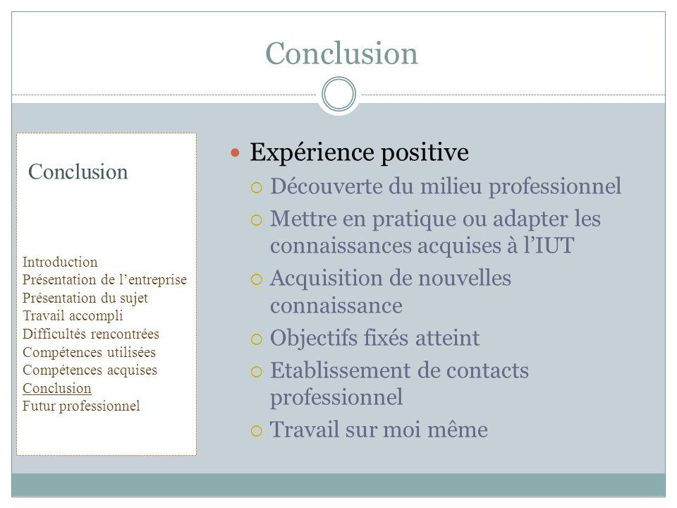 Conclusion Expérience positive Découverte du milieu professionnel