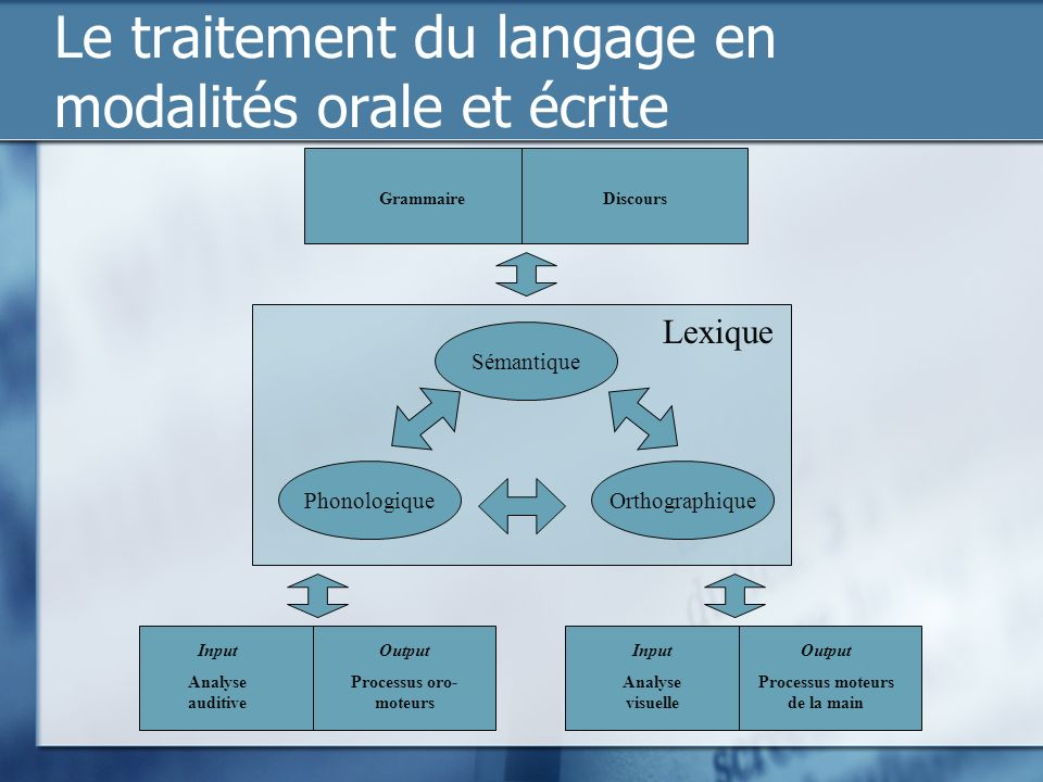 Le traitement du langage en modalités orale et écrite