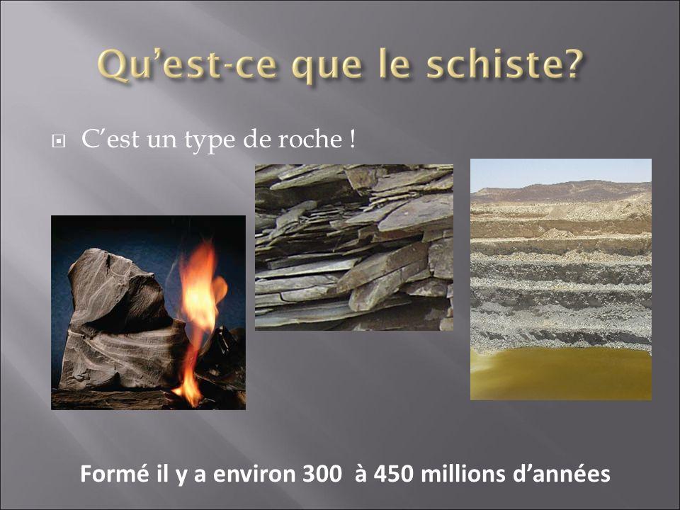 Formé il y a environ 300 à 450 millions d'années