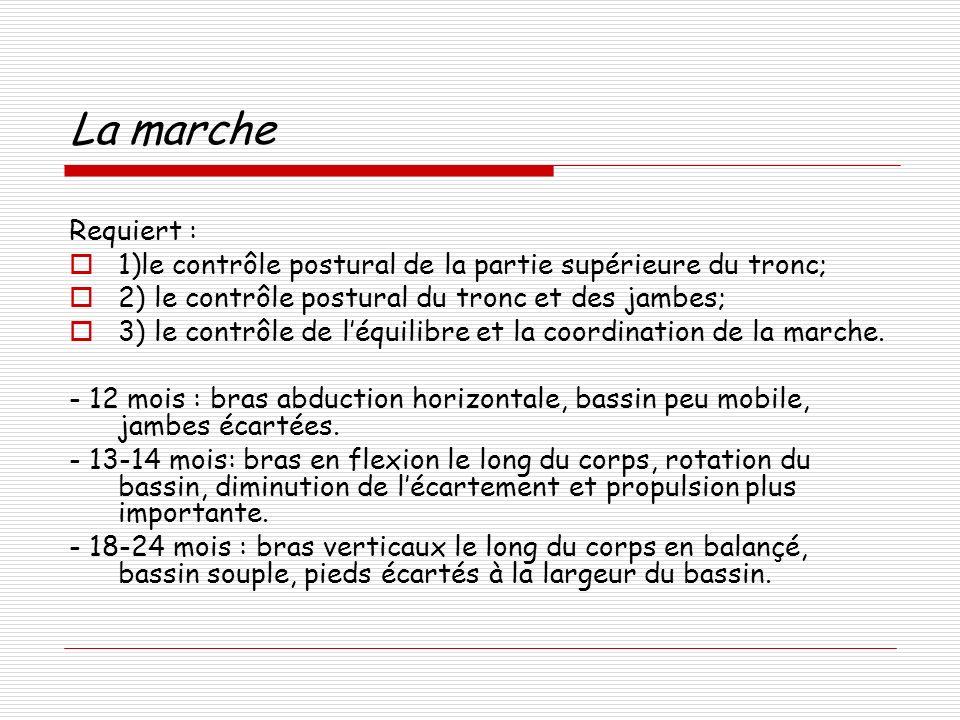 La marche Requiert : 1)le contrôle postural de la partie supérieure du tronc; 2) le contrôle postural du tronc et des jambes;