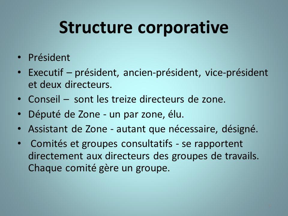 Structure corporative