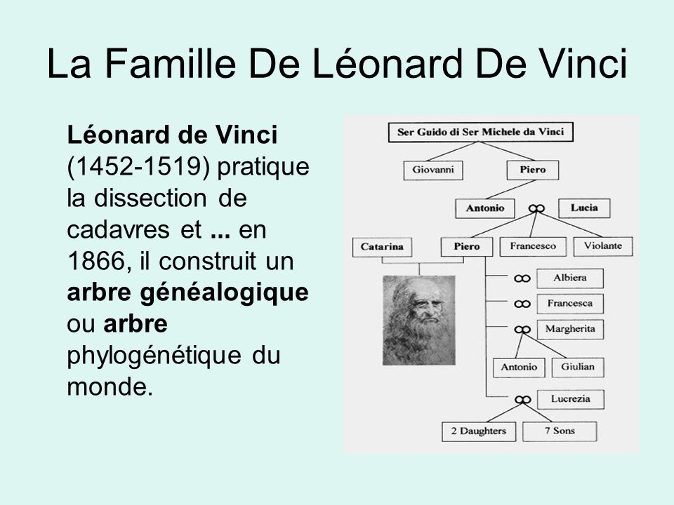 La Famille De Léonard De Vinci