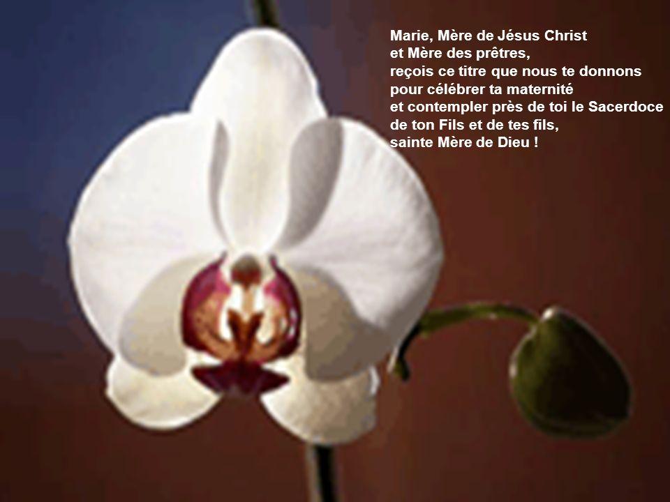 Marie, Mère de Jésus Christ