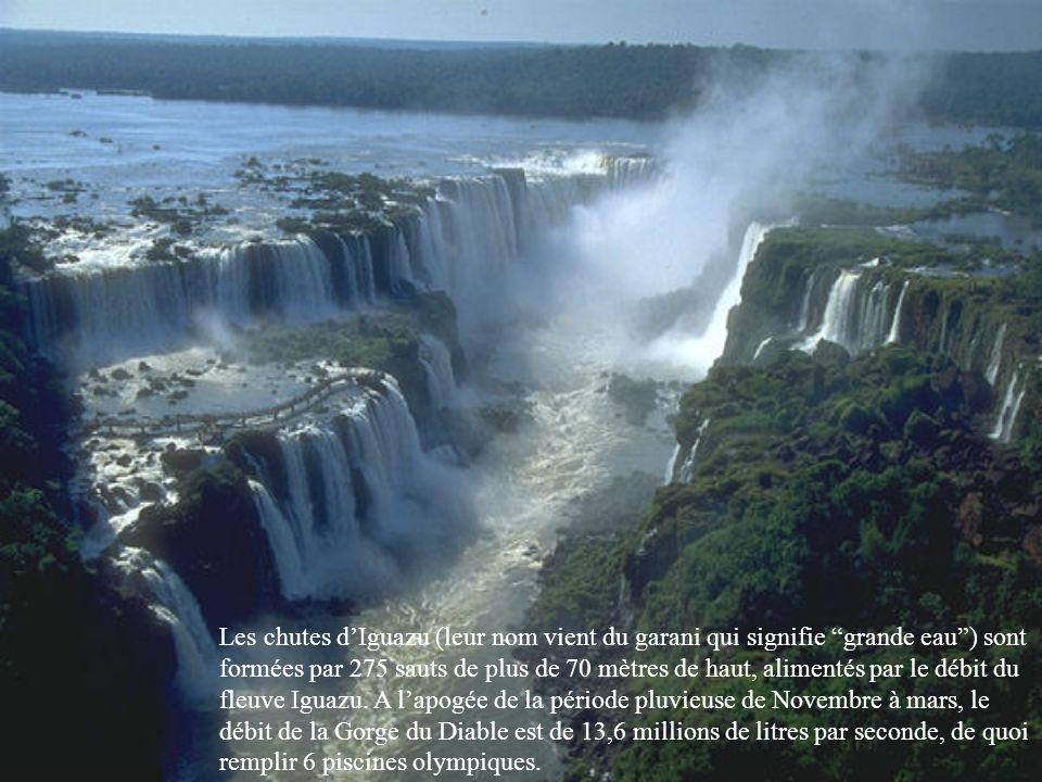 Les chutes d'Iguazu (leur nom vient du garani qui signifie grande eau ) sont formées par 275 sauts de plus de 70 mètres de haut, alimentés par le débit du fleuve Iguazu.