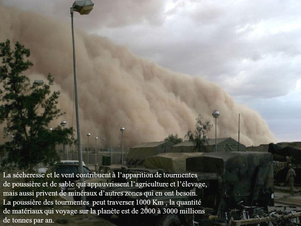 La sécheresse et le vent contribuent à l'apparition de tourmentes