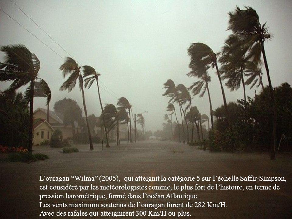 L'ouragan Wilma (2005), qui atteignit la catégorie 5 sur l'échelle Saffir-Simpson,