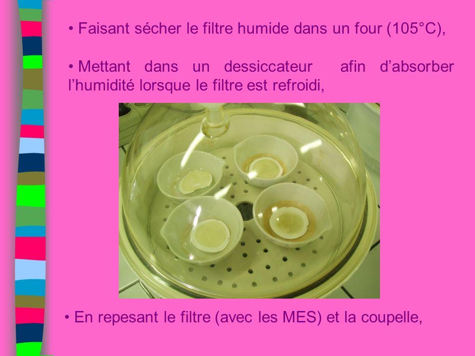 Faisant sécher le filtre humide dans un four (105°C),