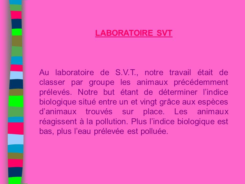 LABORATOIRE SVT