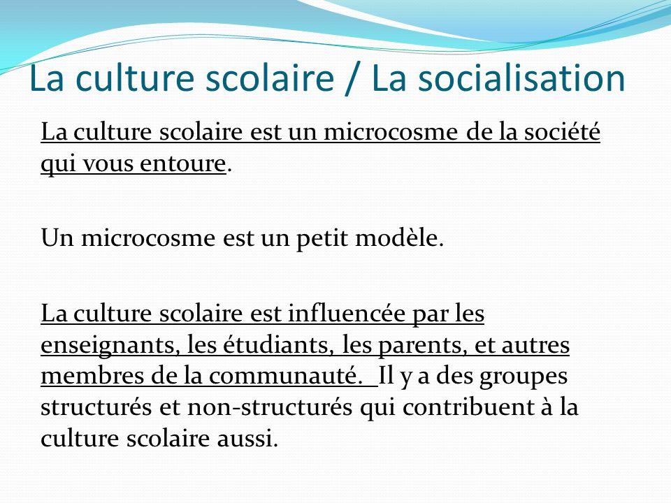 La culture scolaire / La socialisation