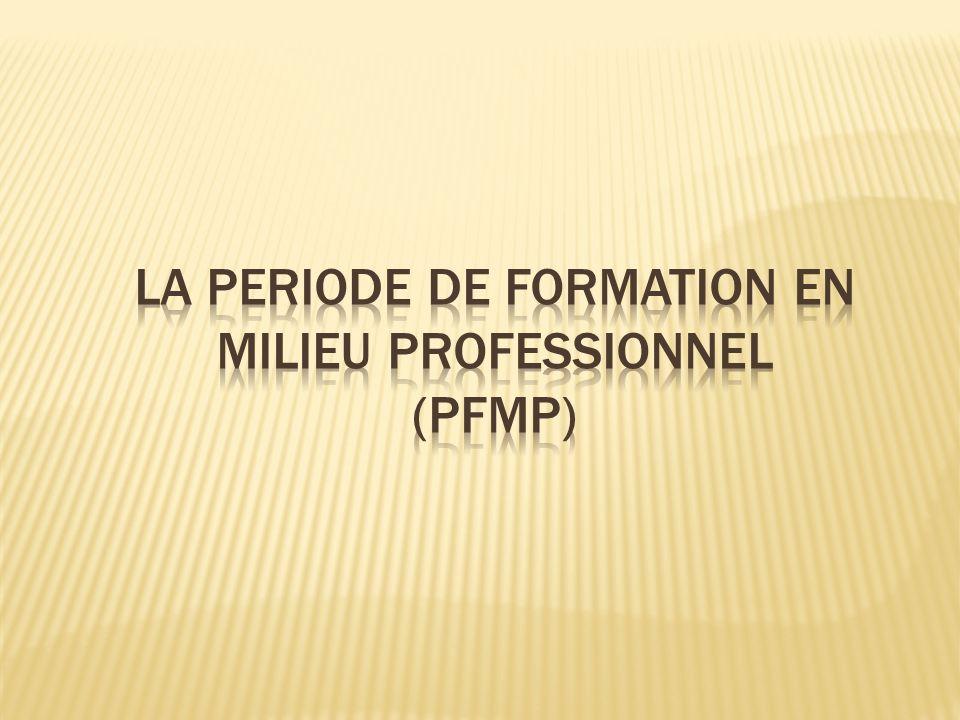 LA PERIODE DE FORMATION EN MILIEU PROFESSIONNEL
