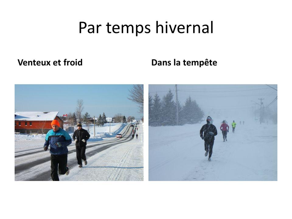 Par temps hivernal Venteux et froid Dans la tempête