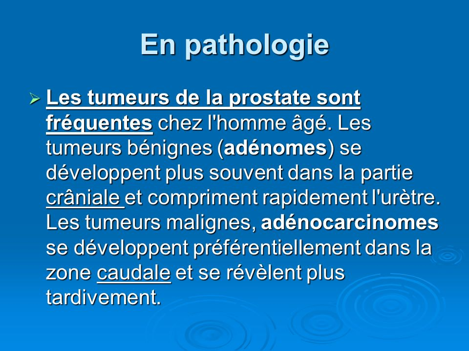 En pathologie
