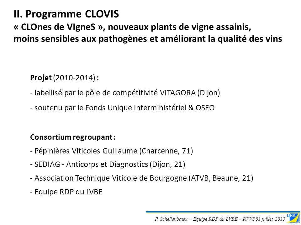 II. Programme CLOVIS« CLOnes de VIgneS », nouveaux plants de vigne assainis, moins sensibles aux pathogènes et améliorant la qualité des vins.