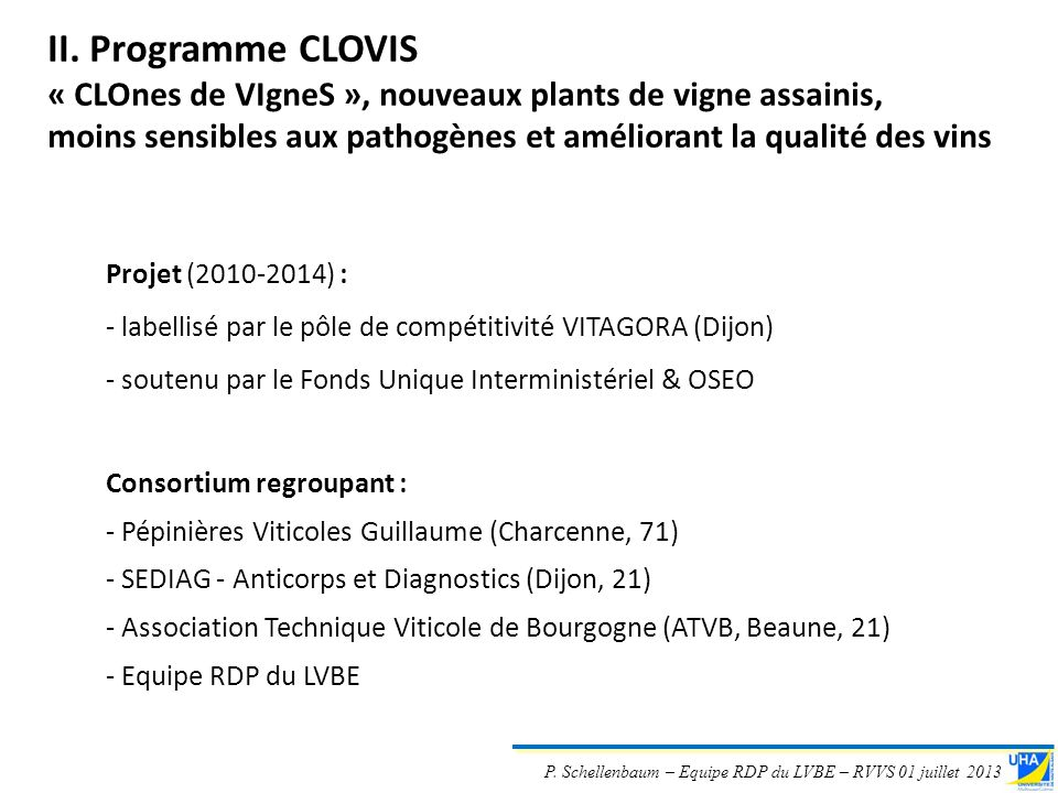 II. Programme CLOVIS « CLOnes de VIgneS », nouveaux plants de vigne assainis, moins sensibles aux pathogènes et améliorant la qualité des vins.