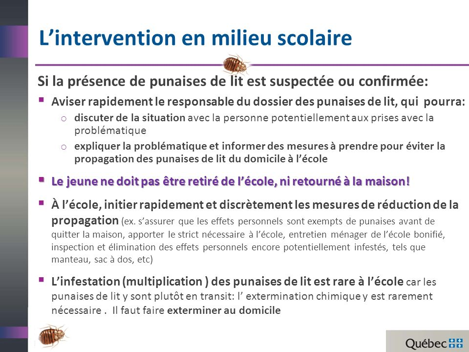 L'intervention en milieu scolaire