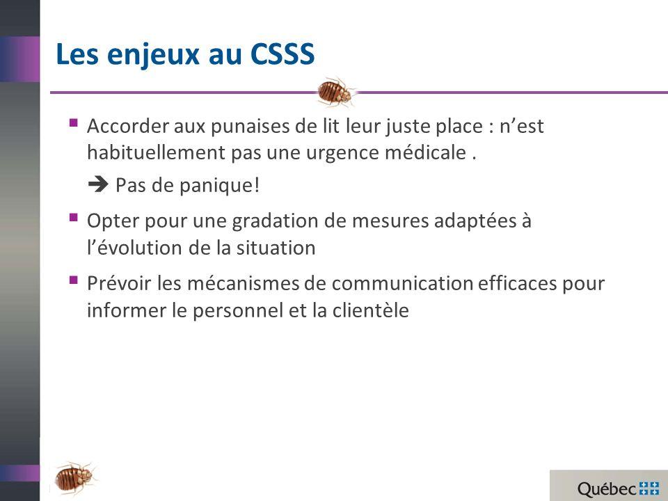 Les enjeux au CSSS Accorder aux punaises de lit leur juste place : n'est habituellement pas une urgence médicale .