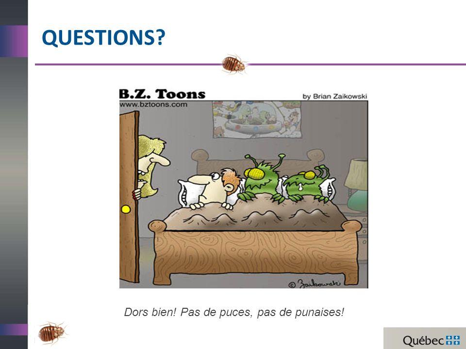 QuestionS Dors bien! Pas de puces, pas de punaises!