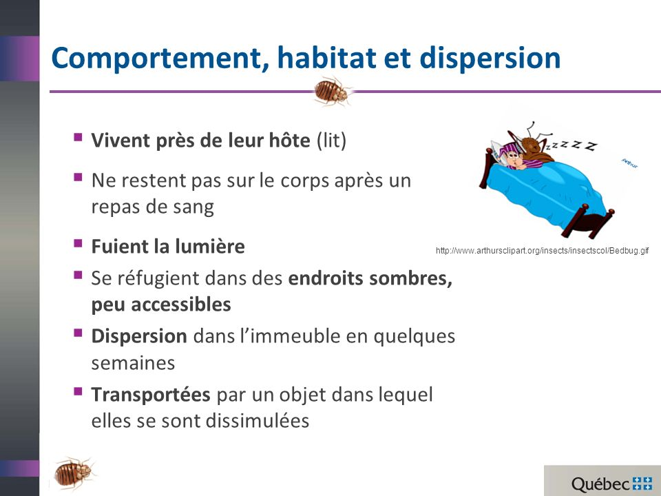 Comportement, habitat et dispersion