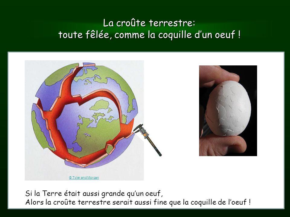 Observatoire royal de belgique ppt video online t l charger - Cloque du pecher coquille d oeuf ...