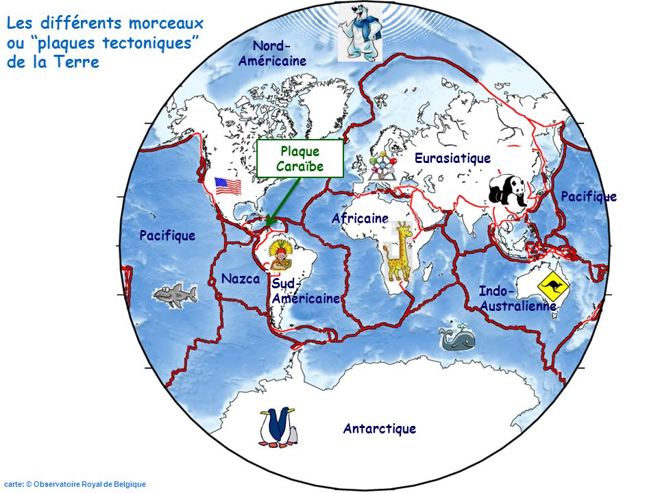 Les différents morceaux ou plaques tectoniques de la Terre