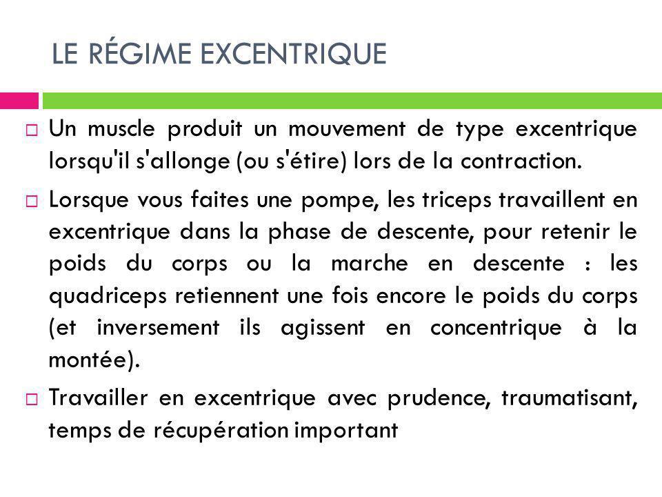 LE RÉGIME EXCENTRIQUE Un muscle produit un mouvement de type excentrique lorsqu il s allonge (ou s étire) lors de la contraction.
