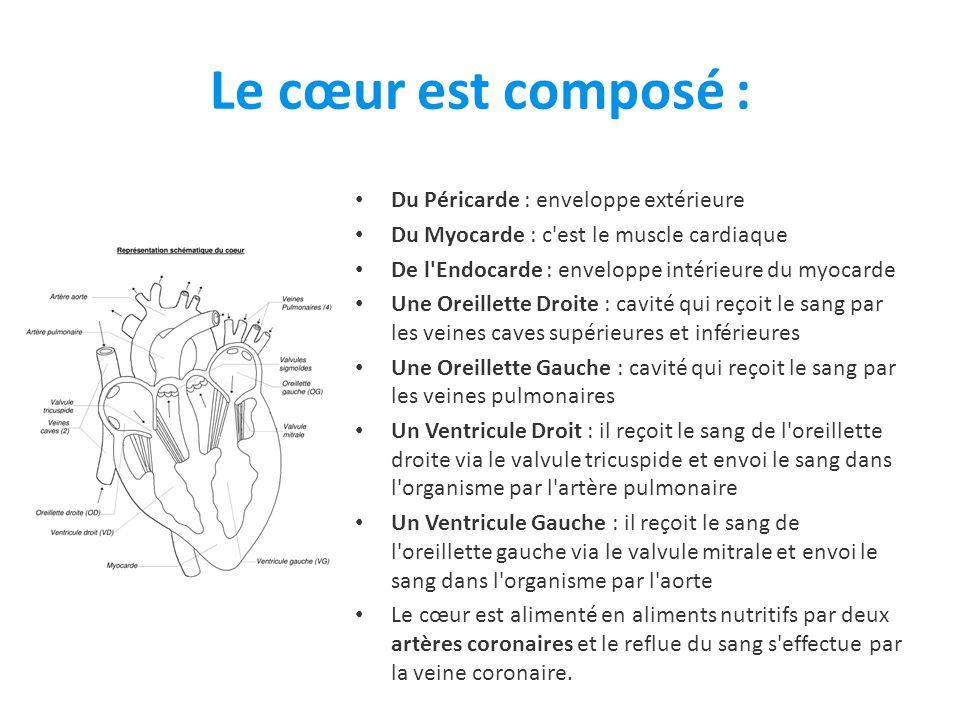 Le cœur est composé : Du Péricarde : enveloppe extérieure
