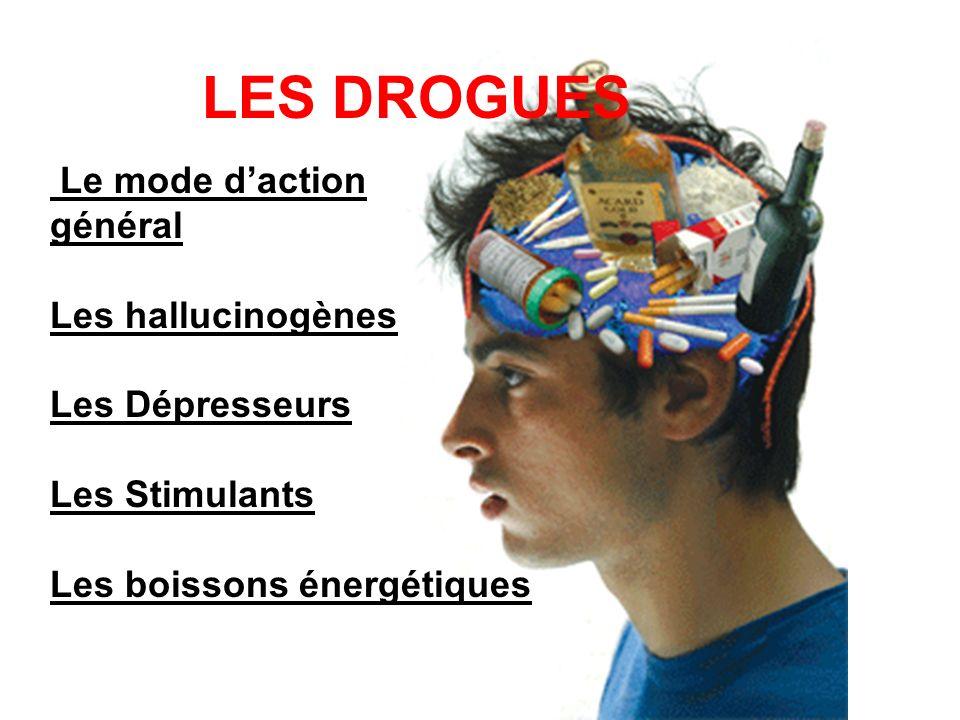 LES DROGUES Le mode d'action général Les hallucinogènes
