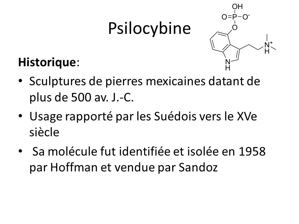 Psilocybine Historique: