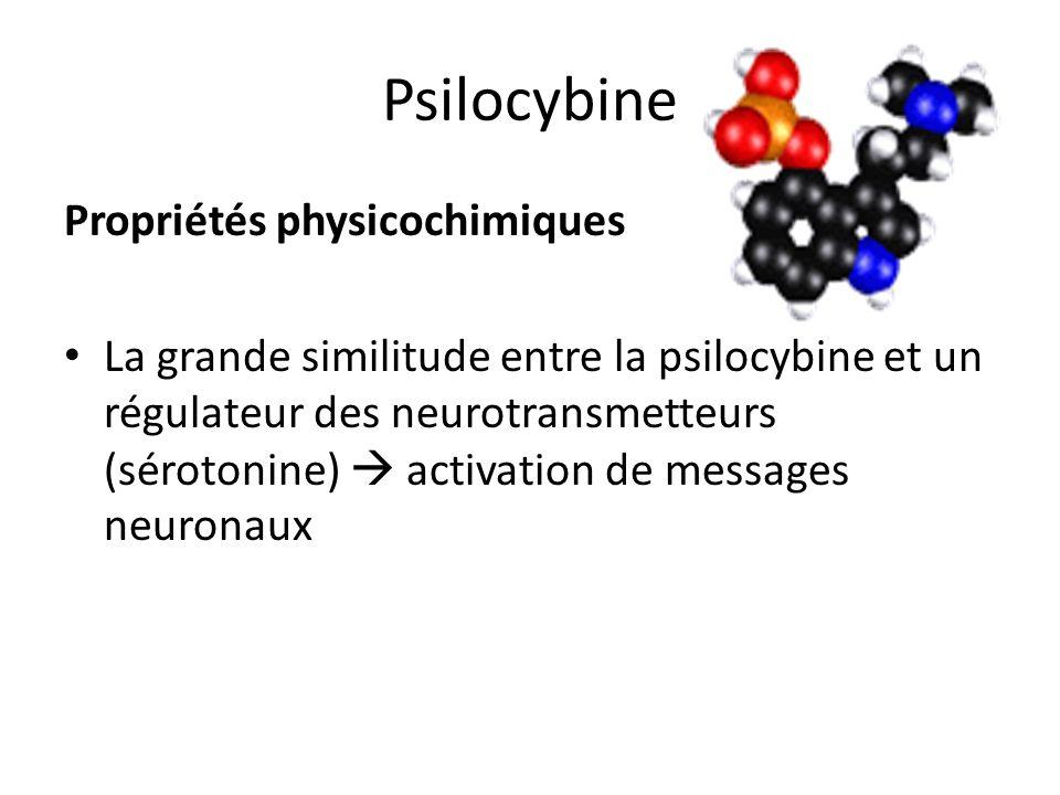 Psilocybine Propriétés physicochimiques