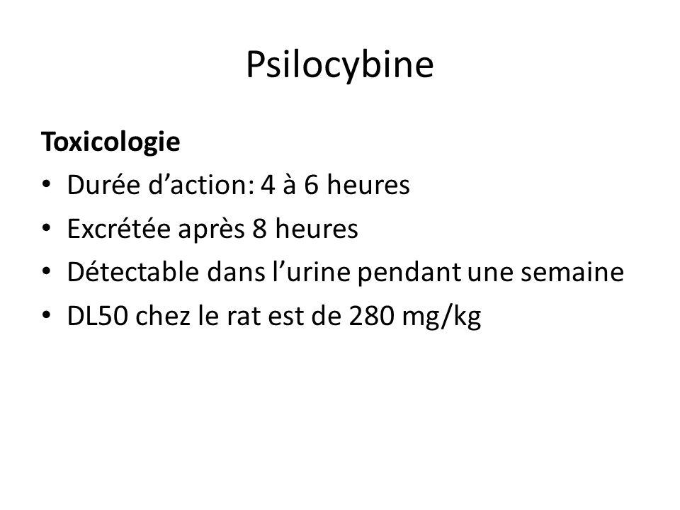 Psilocybine Toxicologie Durée d'action: 4 à 6 heures