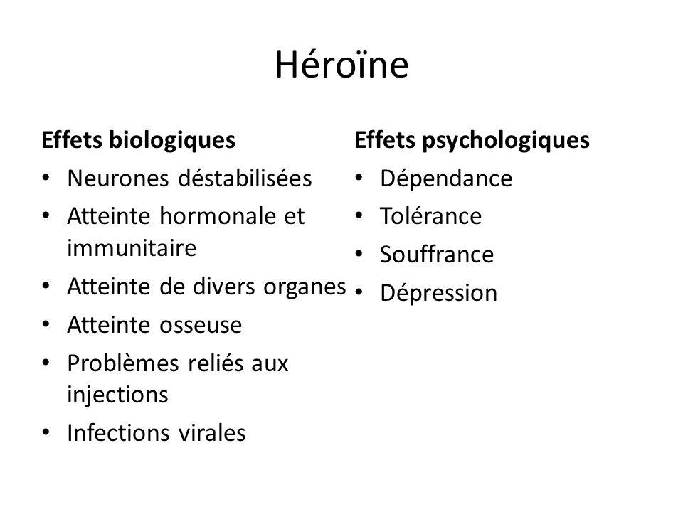Héroïne Effets biologiques Neurones déstabilisées