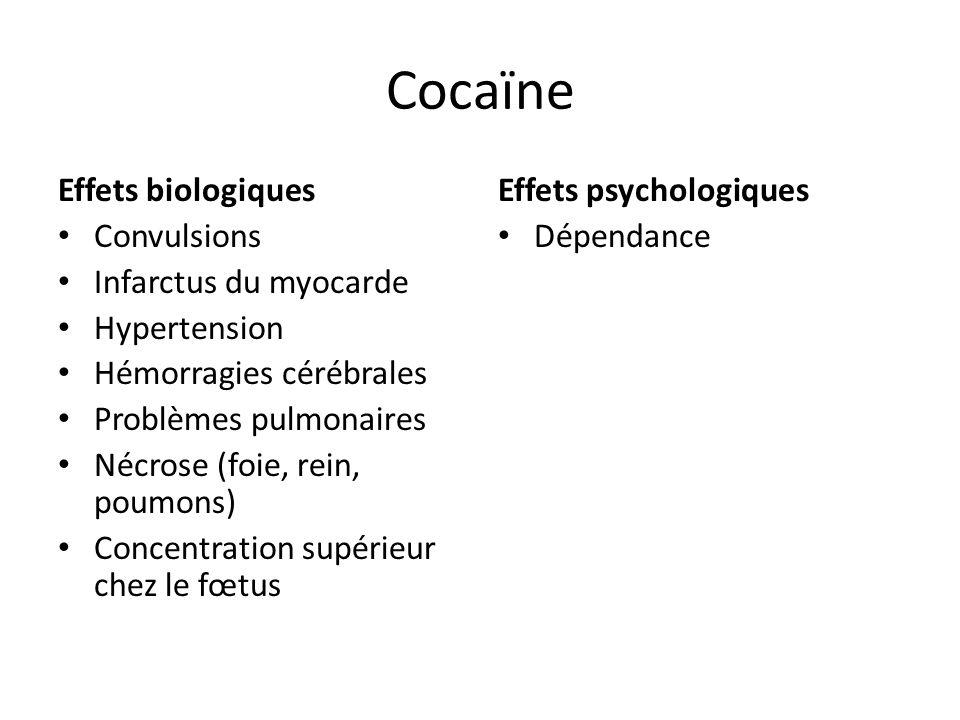 Cocaïne Effets biologiques Convulsions Infarctus du myocarde
