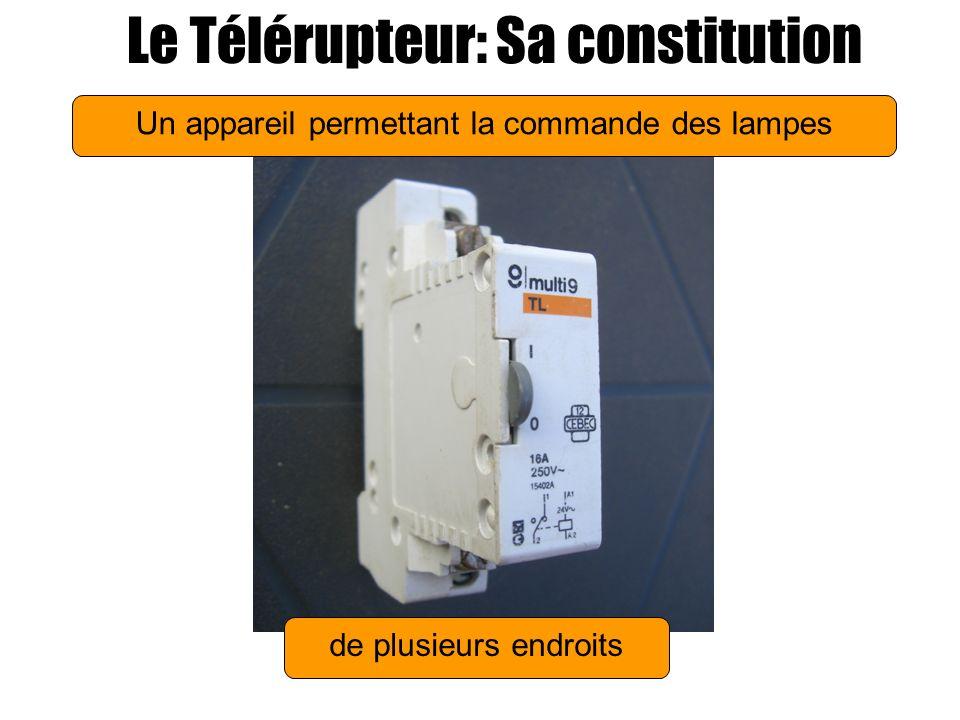 Le Télérupteur: Sa constitution