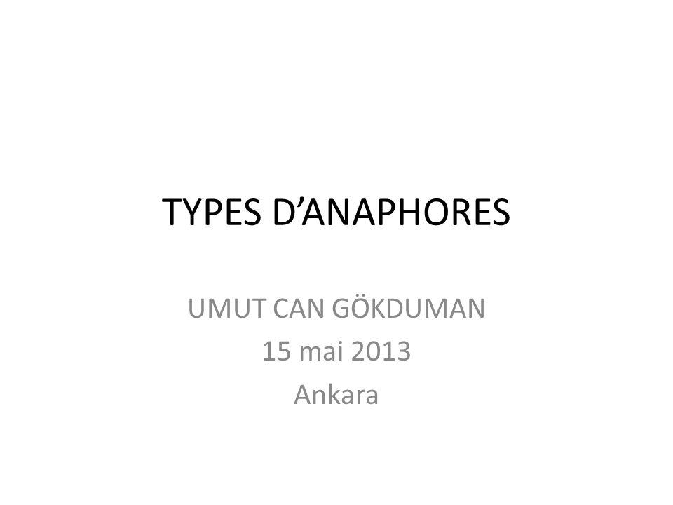 UMUT CAN GÖKDUMAN 15 mai 2013 Ankara