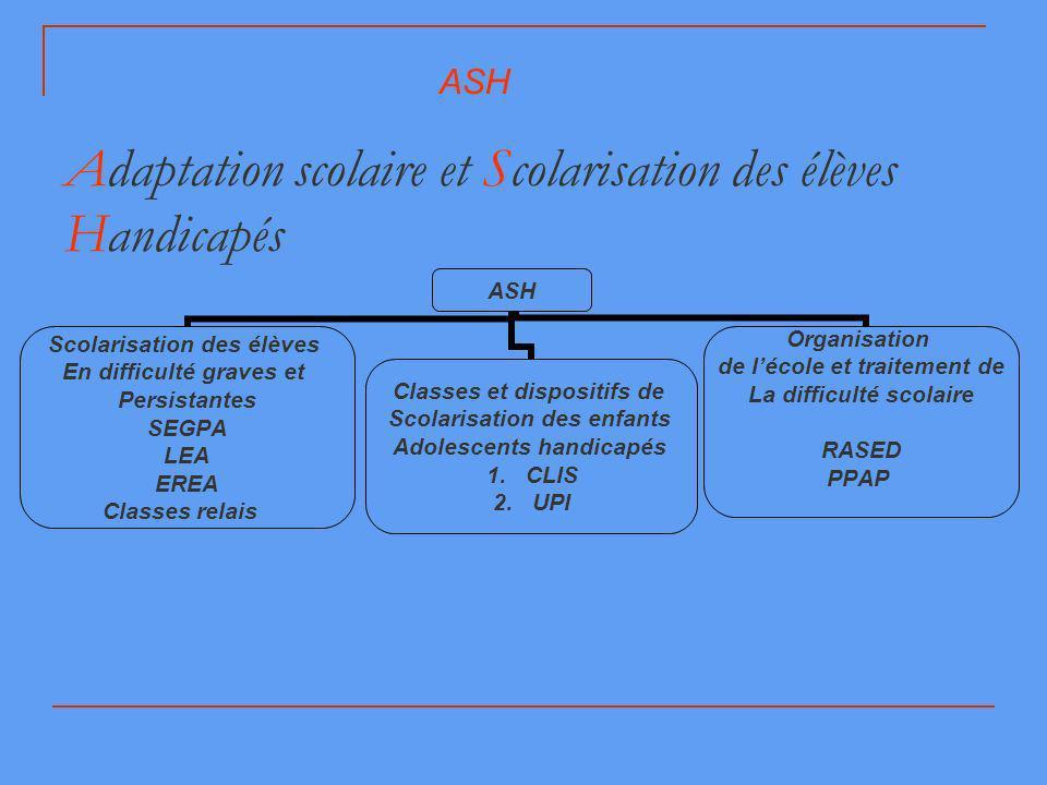 Adaptation scolaire et Scolarisation des élèves Handicapés
