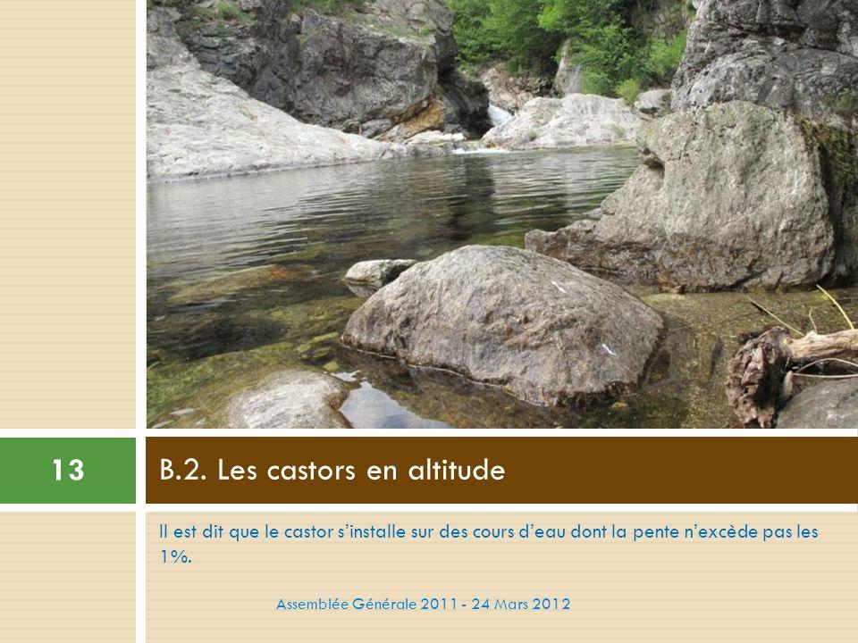 B.2. Les castors en altitude