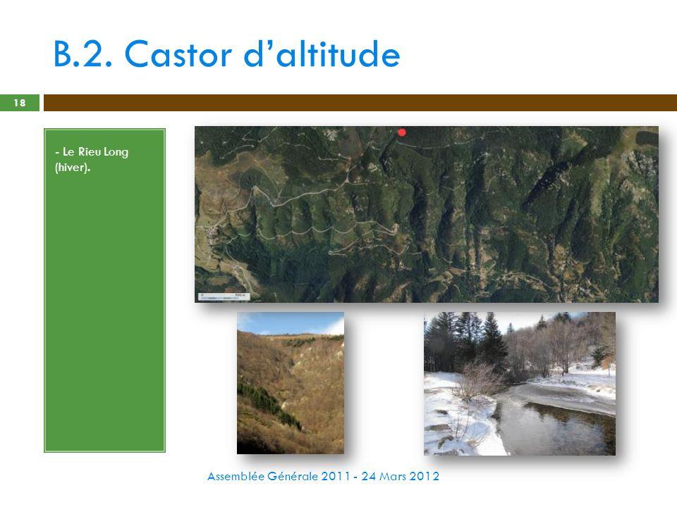 B.2. Castor d'altitude - Le Rieu Long (hiver).