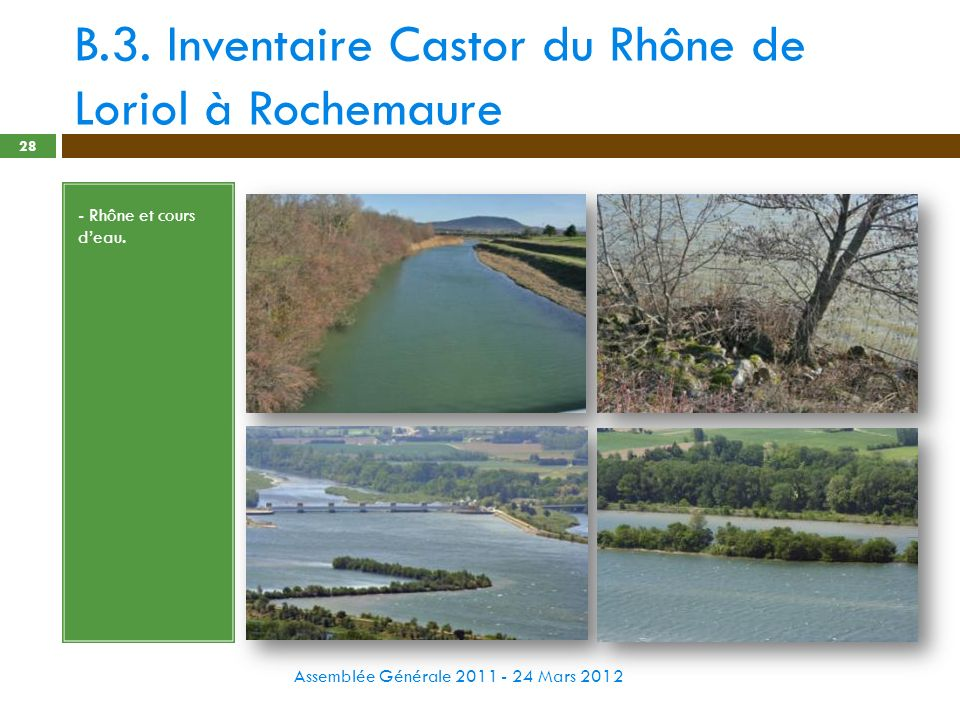 B.3. Inventaire Castor du Rhône de Loriol à Rochemaure