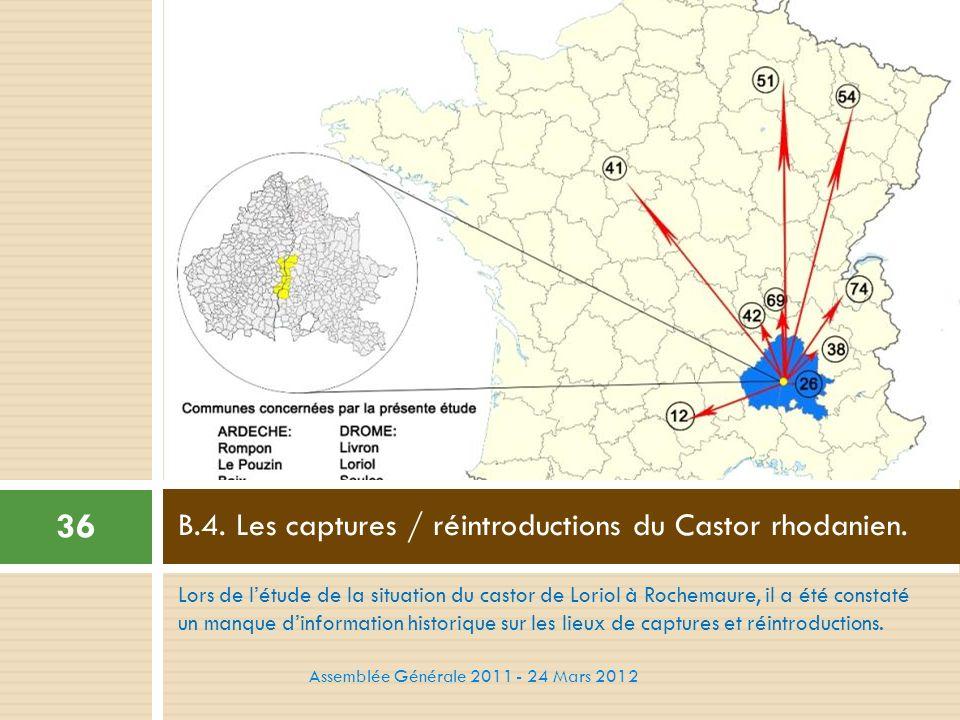 B.4. Les captures / réintroductions du Castor rhodanien.