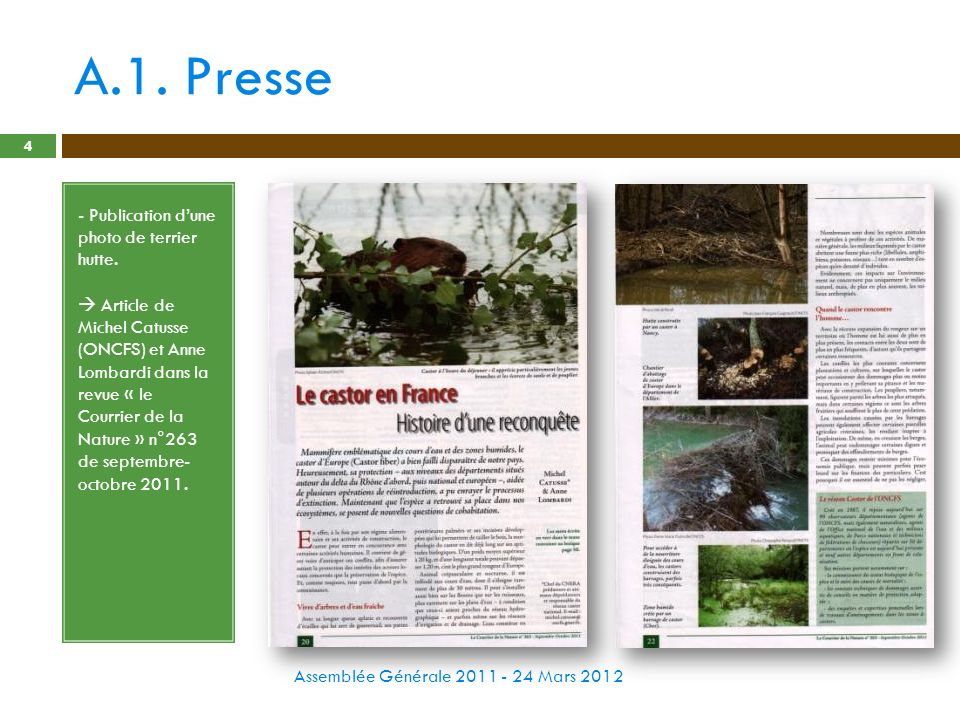 A.1. Presse - Publication d'une photo de terrier hutte.