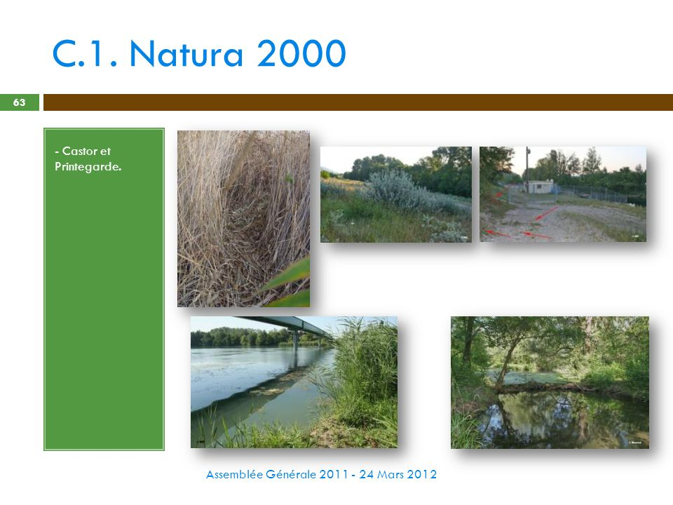 C.1. Natura 2000 - Castor et Printegarde.