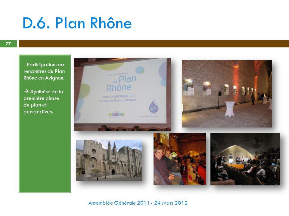 D.6. Plan Rhône - Participation aux rencontres du Plan Rhône en Avignon.  Synthèse de la première phase du plan et perspectives.