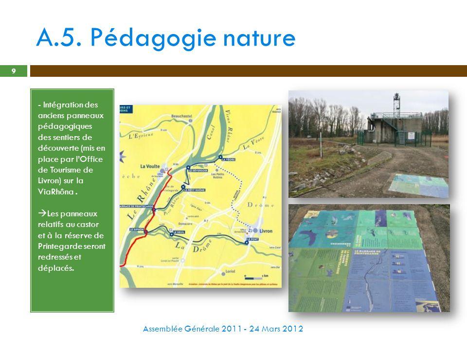 A.5. Pédagogie nature