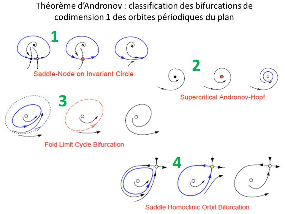 Théorème d'Andronov : classification des bifurcations de codimension 1 des orbites périodiques du plan