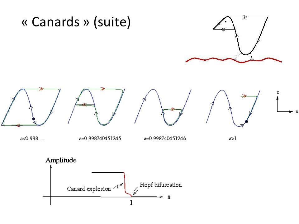 « Canards » (suite)