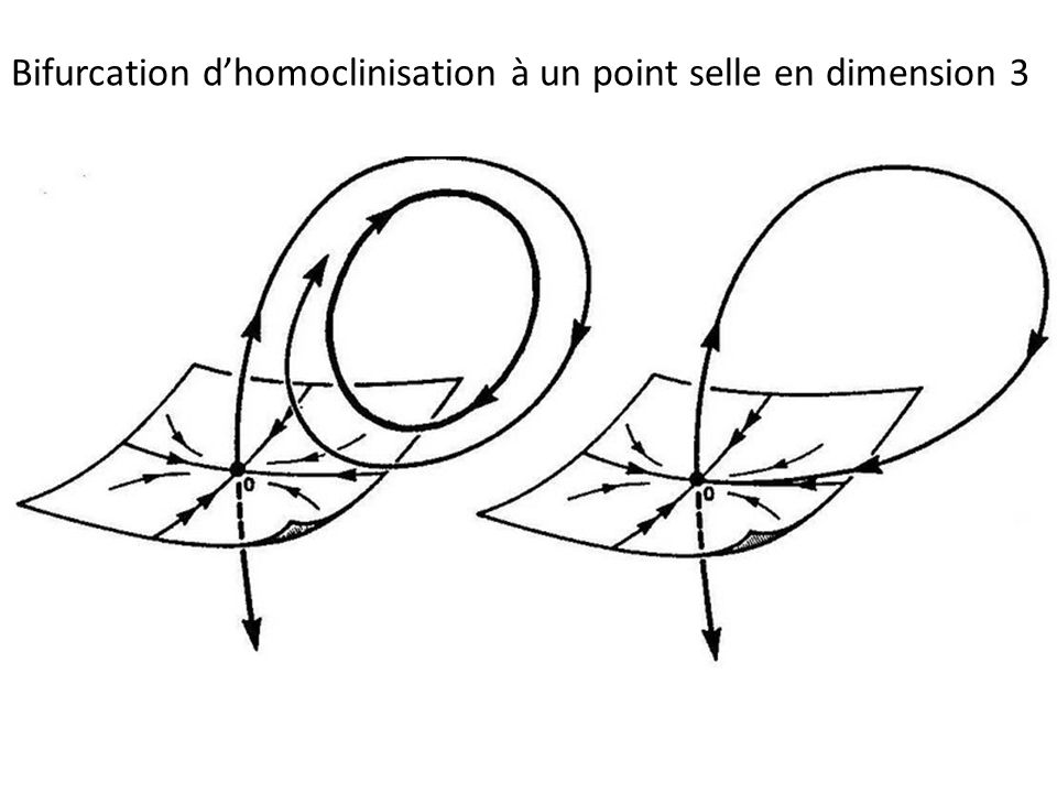 Bifurcation d'homoclinisation à un point selle en dimension 3