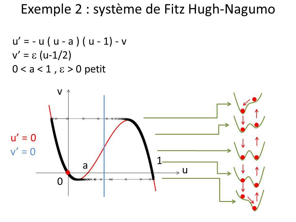 Exemple 2 : système de Fitz Hugh-Nagumo