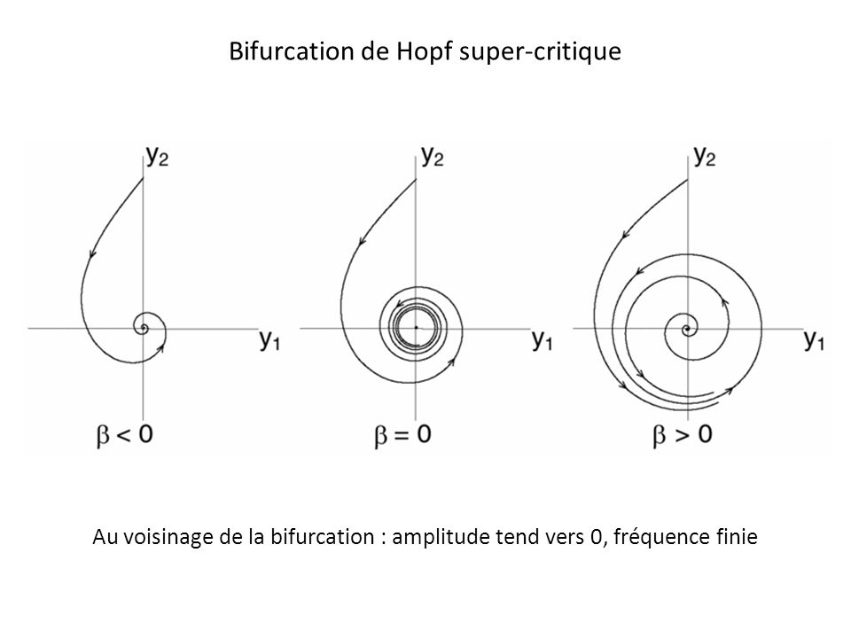 Bifurcation de Hopf super-critique