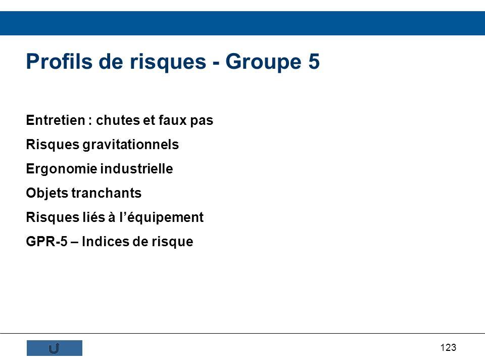 Profils de risques - Groupe 5