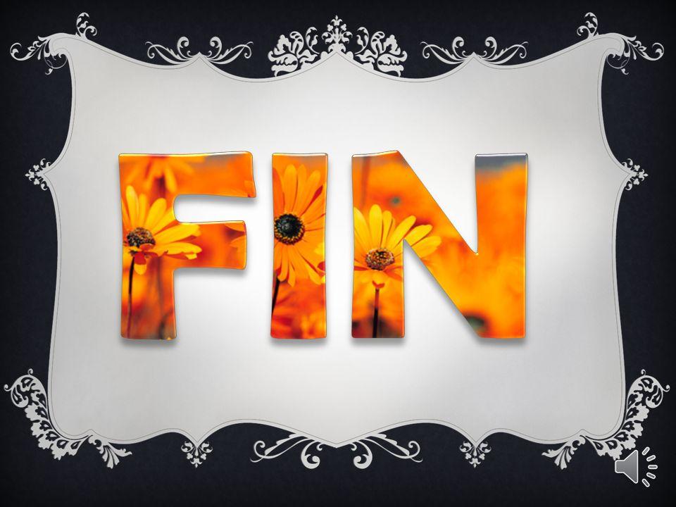 FIN cliquez